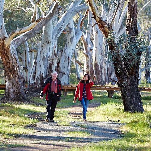 Green Corridor walks in West Wyalong